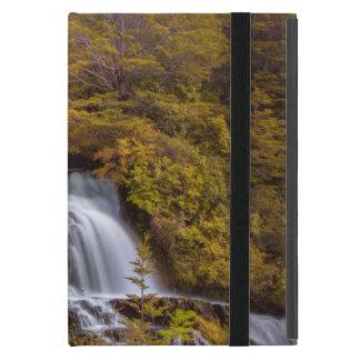 Soft Falls iPad Mini Cover