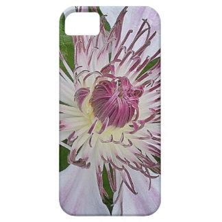 Soft Fuchsia iPhone 5 Cover