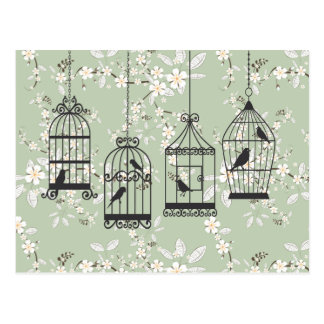 Soft Green Floral With Birdcages Postcard