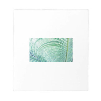 Soft Green Plant Palm Leaf Notepad