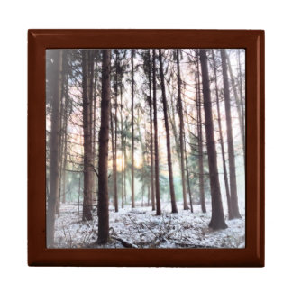 Soft Hazy winter Forest Sunset Gift Box