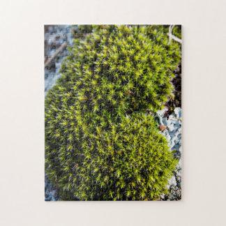Soft Moss Puzzle