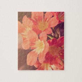 Soft Orange Flower Jigsaw Puzzle
