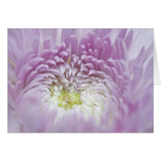 Soft Pastel Lavender Flower Card