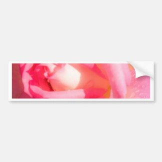 Soft Pink Bumper Sticker