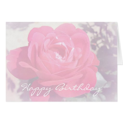 Soft Pink Haze Rose Card