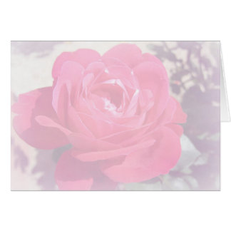 Soft Pink Haze Rose Note Card