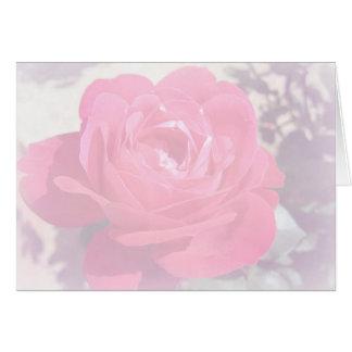 Soft Pink Haze Rose Note Card