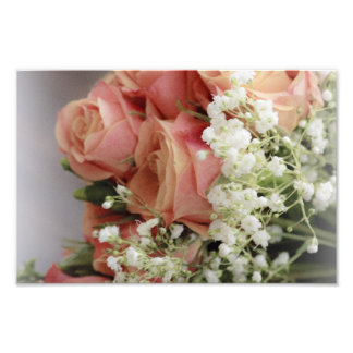 Soft Pink Roses and Baby's Breath Photo