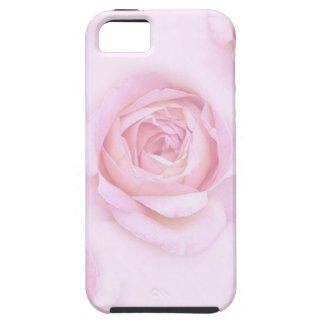 Soft Pink Roses on iPhone 5/5S, Vibe iPhone 5 Cover