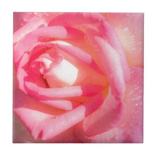Soft Pink Tile