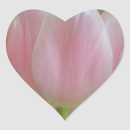 Soft Tulips Heart Sticker