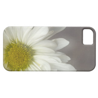 Soft White Daisy iPhone 5 Case-Mate iPhone 5 Covers