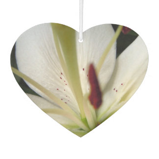 Soft White Lily Up Close Car Air Freshener