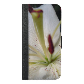 Soft White Lily Up Close iPhone 6/6s Plus Wallet Case