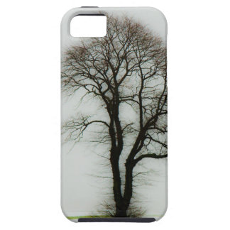 Soft winter tree iPhone 5 cases