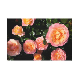 Soft Yellow and Pink Roses Canvas Print