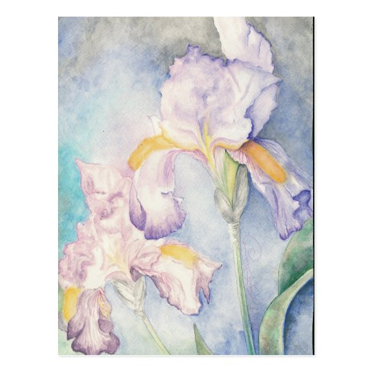 Softest Irises Floral Watercolour Postcard