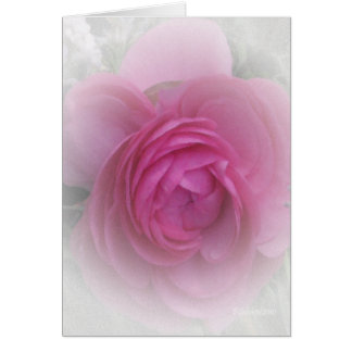 Softly Pink Card
