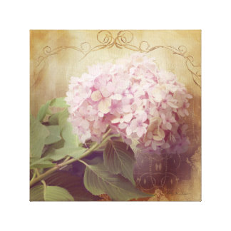 Softly Summer 2 Pink Hydrangeas Floral Vintage Canvas Print