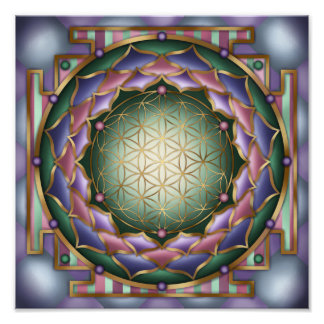 Softness Mandala Print by Rachel C Bemis Photo Art