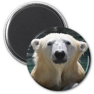Soggy Polar Bear Magnet