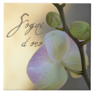 Sogni D'oro (sweet dreams) Orchid Tile