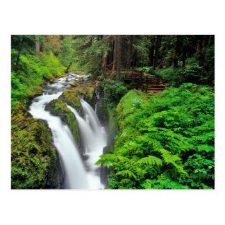 Sol Duc Falls in Olympic National Park in Postcard