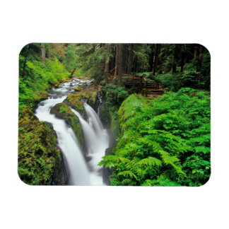 Sol Duc Falls in Olympic National Park in Rectangular Photo Magnet