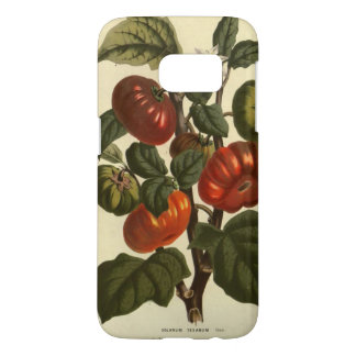 Solanum texanum vintage botanical print phone case