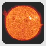 Solar activity on the Sun Square Sticker