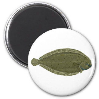Sole Fish Logo Magnet