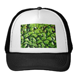 solid Green lily pads Mesh Hat