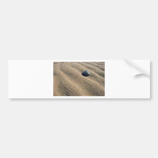 Solitary beach bumper sticker