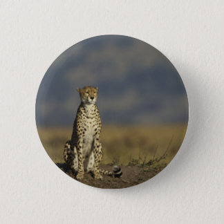 Solitary Cheetah 2 Inch Round Button