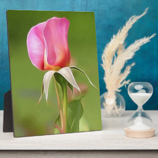 Solitary pink rose bud plaque