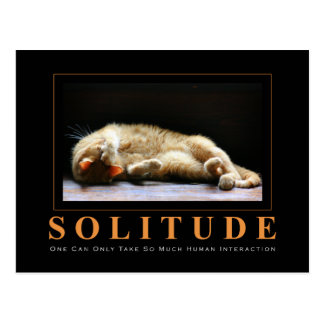 SOLITUDE Cat Photography Anti-Motivational Postcard