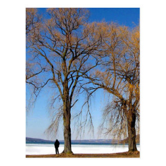 Solitude - Cayuga Lake Postcard