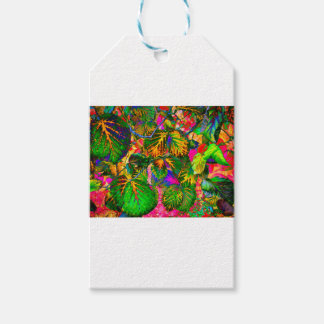 solleafs pack of gift tags