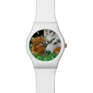 Somali Cat Siberian Husky Cute Friends  dial-plate Watch
