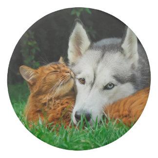 Somali Cat Siberian Husky Cute Friends Huddle Love Eraser