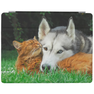 Somali Cat Siberian Husky Cute Friends Huddle Love iPad Cover