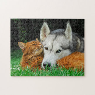 Somali Cat Siberian Husky Cute Friends Huddle Love Jigsaw Puzzle