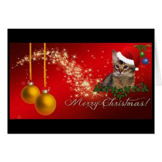 Somali Cats Christmas Card