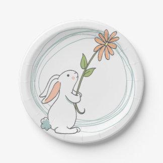 Some Bunny Birthday Plates