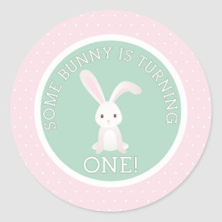 Some Bunny is Turning one! Classic Round Sticker