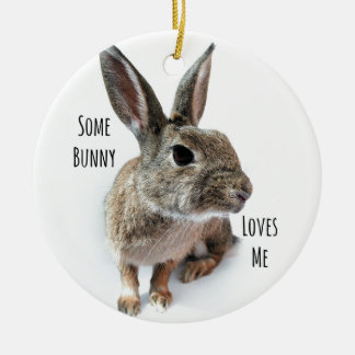Some Bunny Loves Me Collection Rabbit Easter Ceramic Ornament