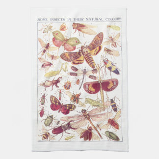 Some Insects In Their Natural Colors Kitchen Towel