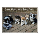 Some Pose, Some Don't ~ Corgi Puppies in a Row Card