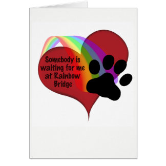 Somebody is Waiting for Me at Rainbow Bridge Cat Card